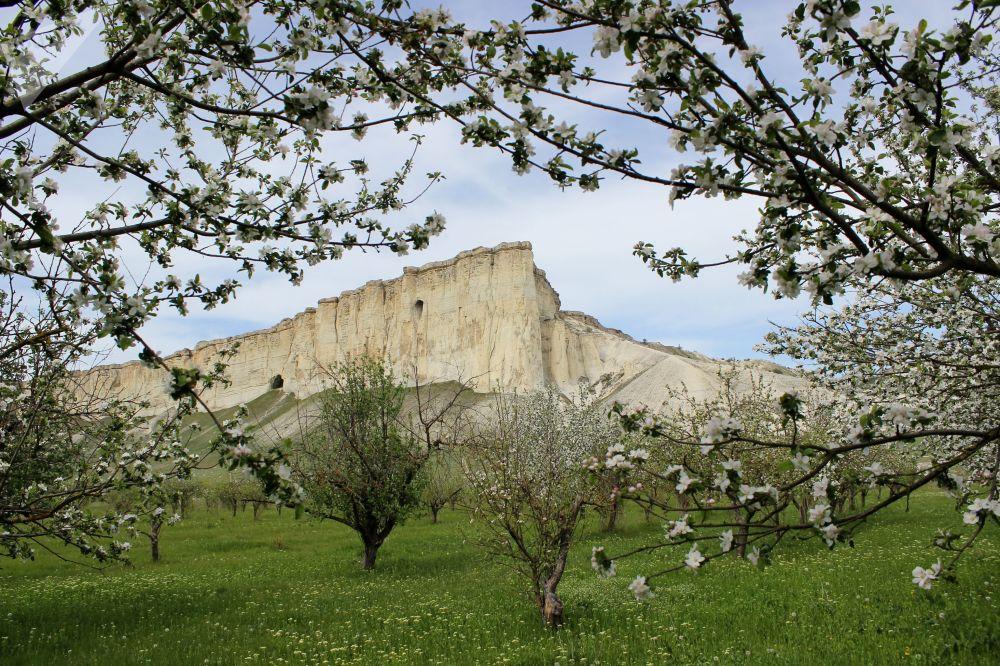 الجرف الصخري بيلوغورسك في القرم