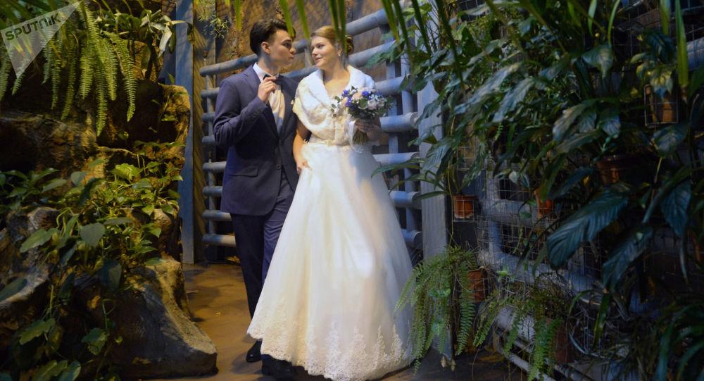 حفل زواج روسي فريد - الزوجان أنطون كرافتشينكو وماريا كرافتشينكو في حديقة موسكو للحيوانات