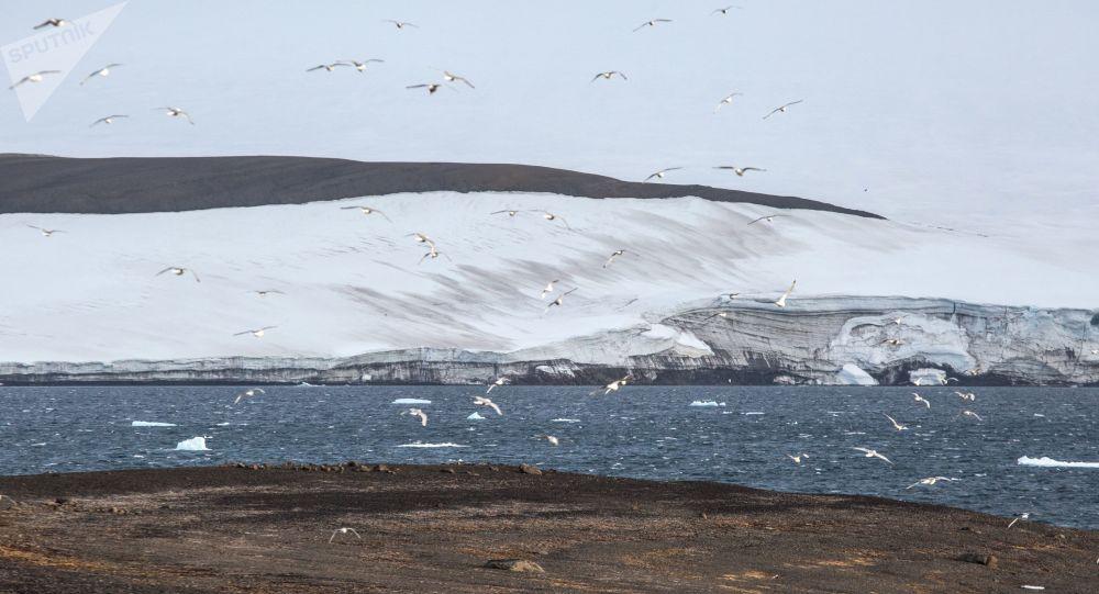 جزيرة غريلي على أرخبيل أرض فرانس جوزيف في بحر بارنتس في منطقة القطب الشمالي حيث تابع حملة تنظيف الأرخبيل