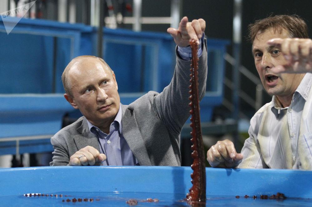 الرئيس فلاديمير بوتين في زيارة إلى الحديقة المائية بريموؤسكي كراي في فلاديفوستوك، روسيا