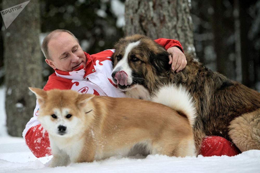 الرئيس فلاديمير بوتين وكلبيه بافي ويوماي خلال نزهة في ضواحي موسكو، روسيا
