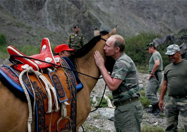 فلاديمير بوتين خلال قضاء عطلته الصيفية في جمهورية تيفا، روسيا عام 2008