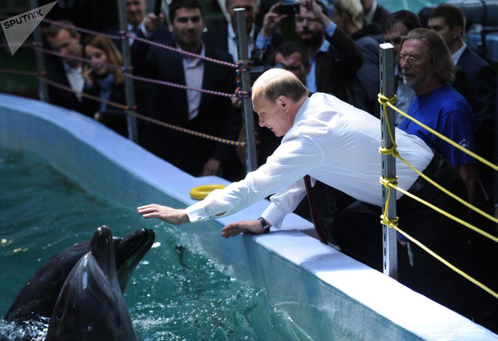 الرئيس فلاديمير بوتين في حديقة مائية في بريمورسكي كراي، روسيا