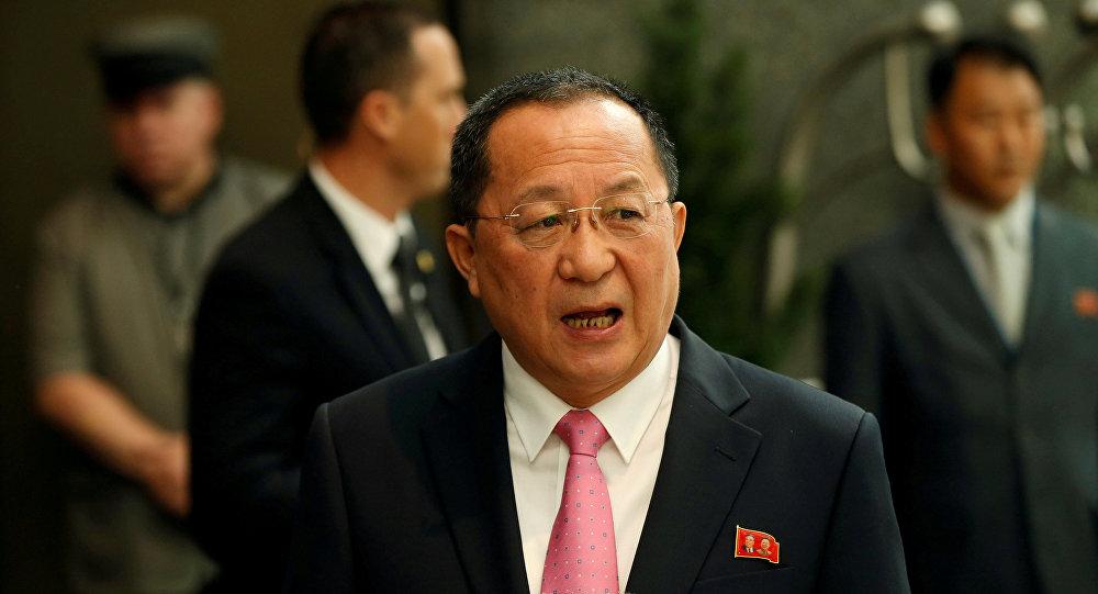 وزير خارجية كوريا الشمالية ري يونغ-هو