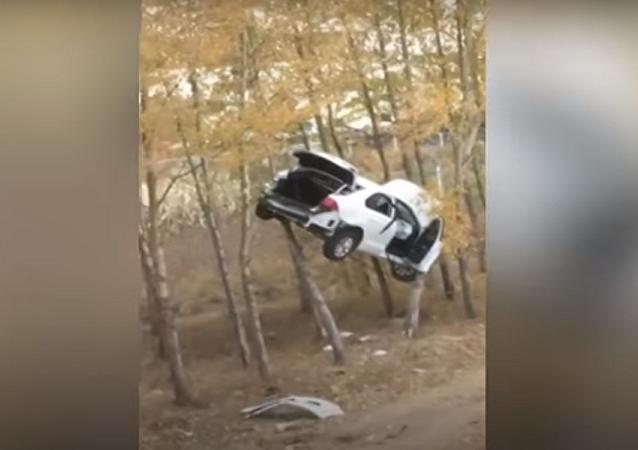 سيارة معلقة على فروع الأشجار