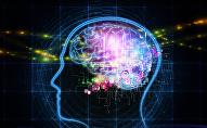 دماغ - مخ