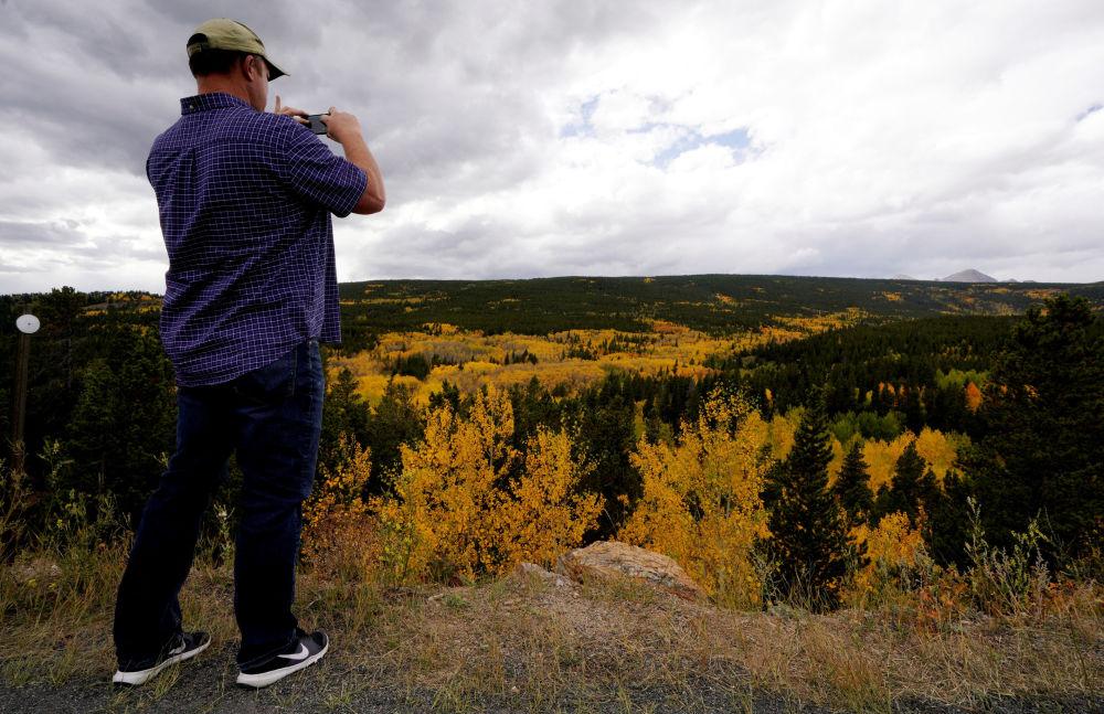 رجل يصور الغابات في أسبن بولاية كولورادو