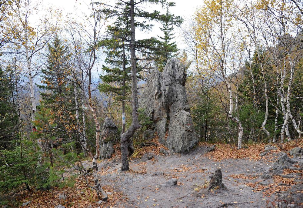 المحمية الطبيعية تايغان في منطقة تشيليابينسك