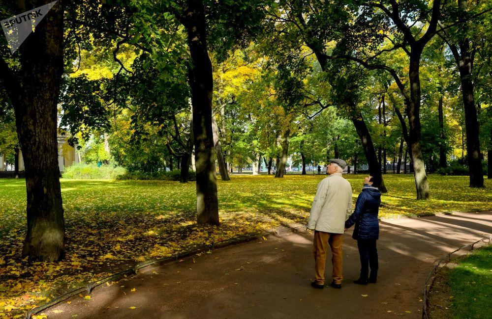 حديقة ميخايلوفسكي ساد في سان بطرسبورغ