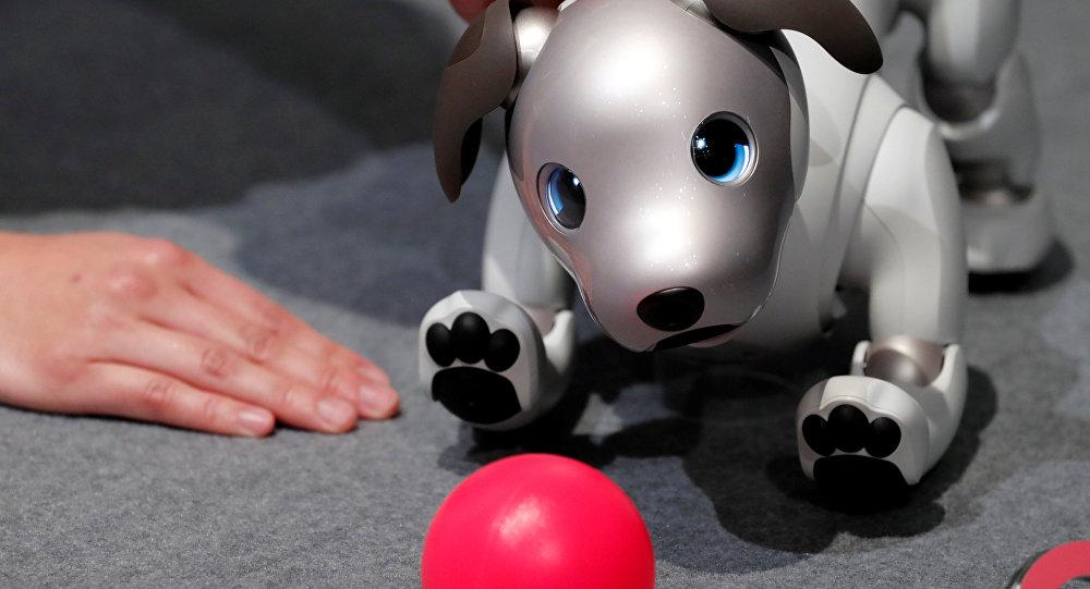 الكلب Aibo
