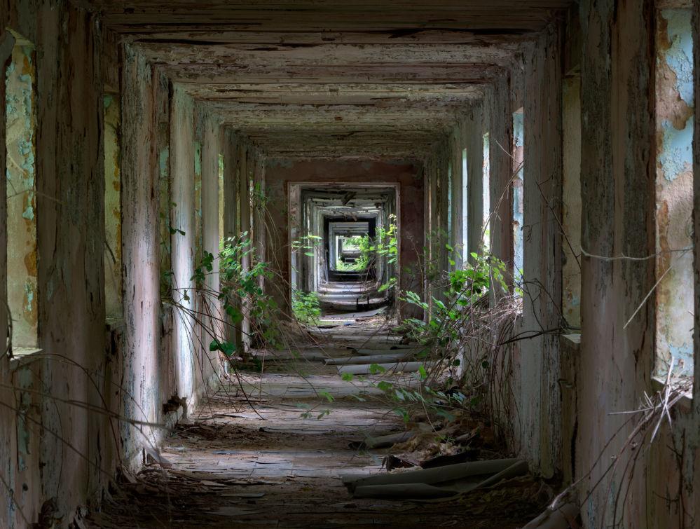 مسابقة التصوير التاريخي لهذا العام (Historic Photographer of the Year) - صورة بعنوان نوكتون هال ميليتاري، للمصور مات إميت