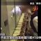 مضيفة طيران صينية تأكل مخلفات طعام الركاب