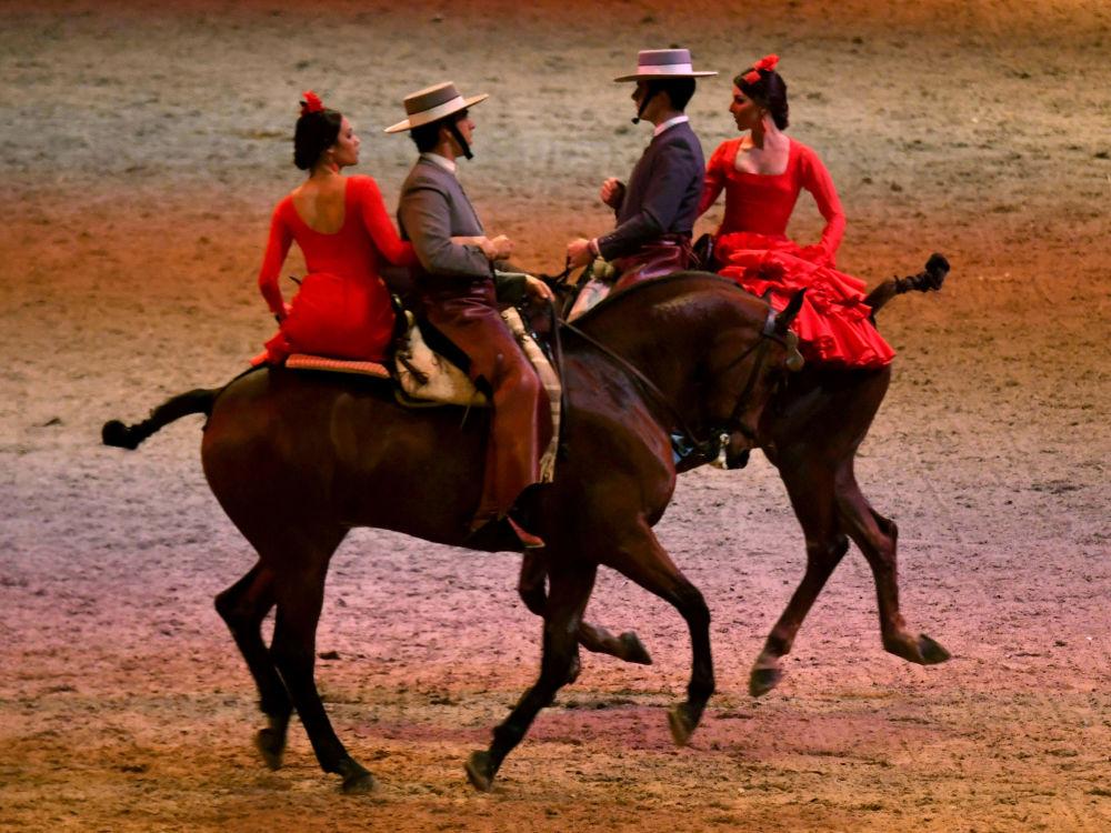 أداء الفرقة الإسبانية قرطبة إكويستري في عرض الفروسية مع الخيول الأندلسية فيباب لازلز أرينا في بودابست، المجر 2 ديسمبر/ كانون الأول 2017