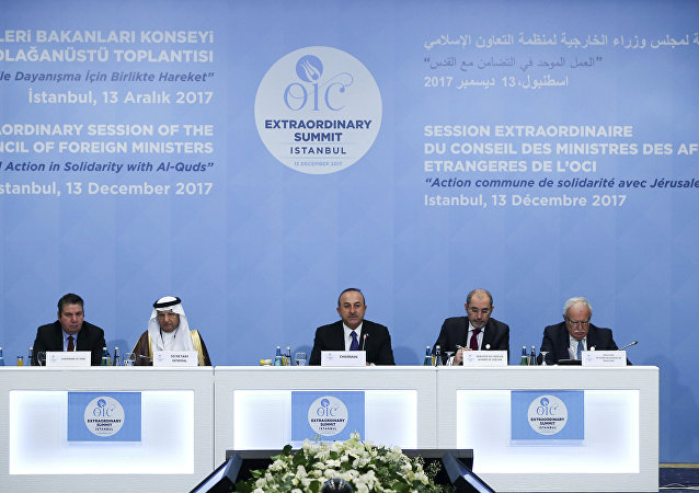 الدورة الاستثنائية لمجلس وزراء الخارجية لمنظمة التعاون الإسلامي في اسطنبول، تركيا 13 ديسمبر/ كانون الأول 2017