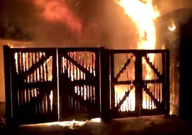 حريق حديقة حيوان لندن