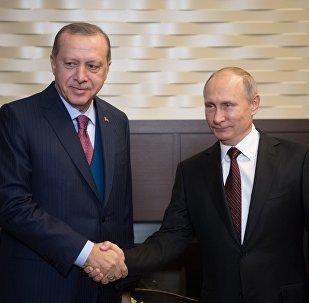 لقاء الرئيس الروسي فلاديمير بوتين مع نظيره التركي في سوتشي، 13 نوفمبر، 2017