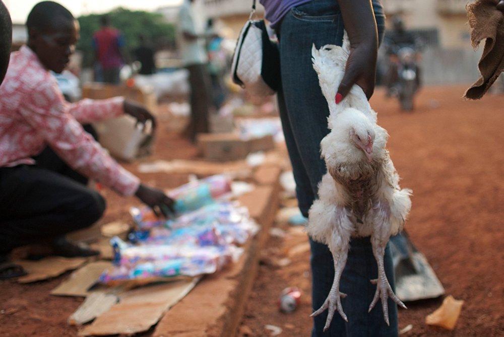 امرأة تحمل دجاجة لطبخها في عيد الكريسماس في سوق وسط مدسنة بانغةي بجمهورية أفريقيا الوسطى.