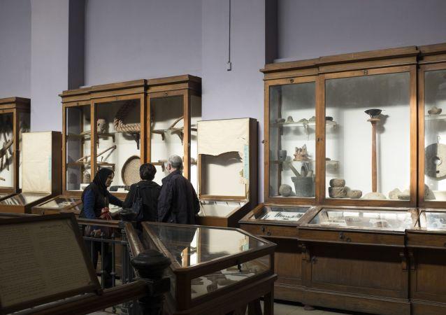 الزوار في متحف القاهرة المصري