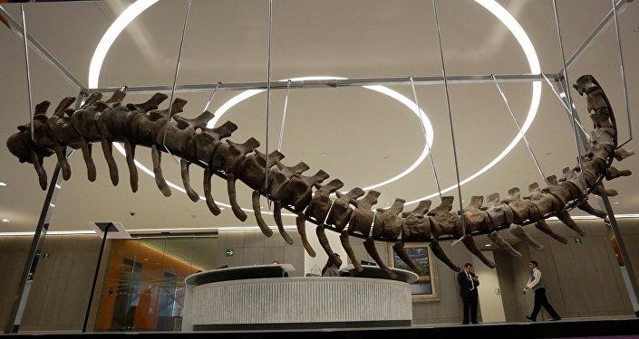 ذيل ديناصور
