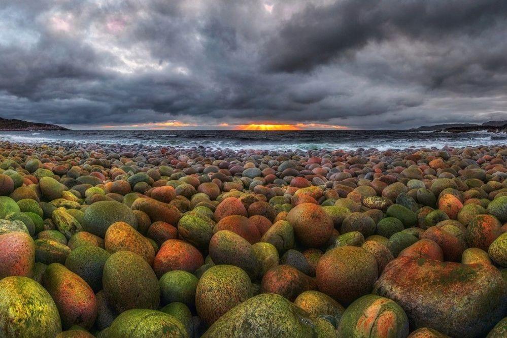 المهرجان الخامس للتصوير بيرفوزدانايا روسيا - صورة بعنوان الشاطئ ذو الظروف القاسية في بحر بارنتس للمصور أندري غراتشيوف