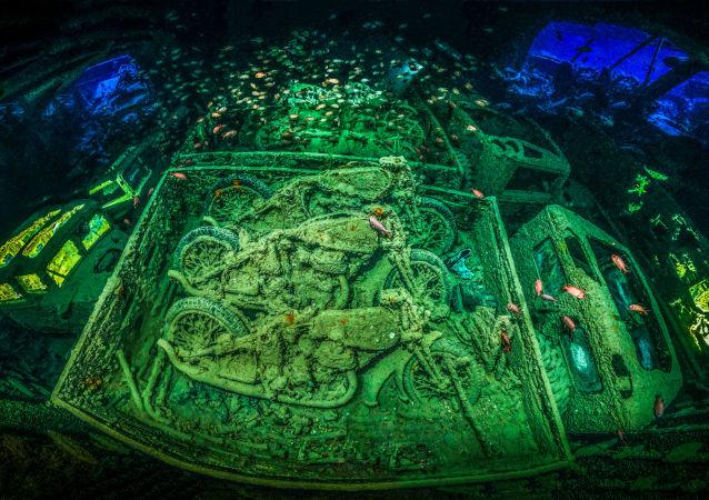 مسابقة صور تحت الماء لعام 2018 - صورة فائزة  في المسابقة CYCLE-WAR للمصور الألماني توبياس فريدريخ،