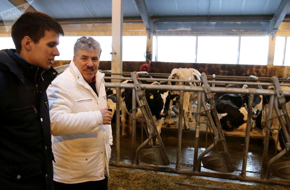 بافيل غرودينين، مرشح لمنصب رئاسة الدولة من قبل الحزب الشيوعي، في مزرعة سوفخوز بإسم لينين في ضواحي موسكو