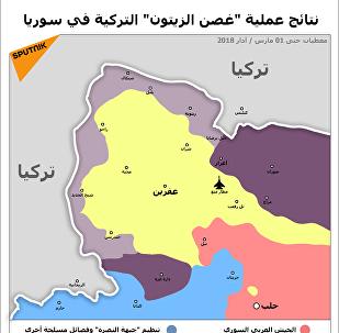 عملية غصن الزيتون التركية في سوريا