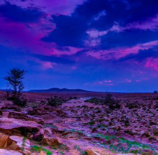 مشهد يطل على حافة العالم (أو كما يسمونها المحليون: المطل) بالقرب من الرياض