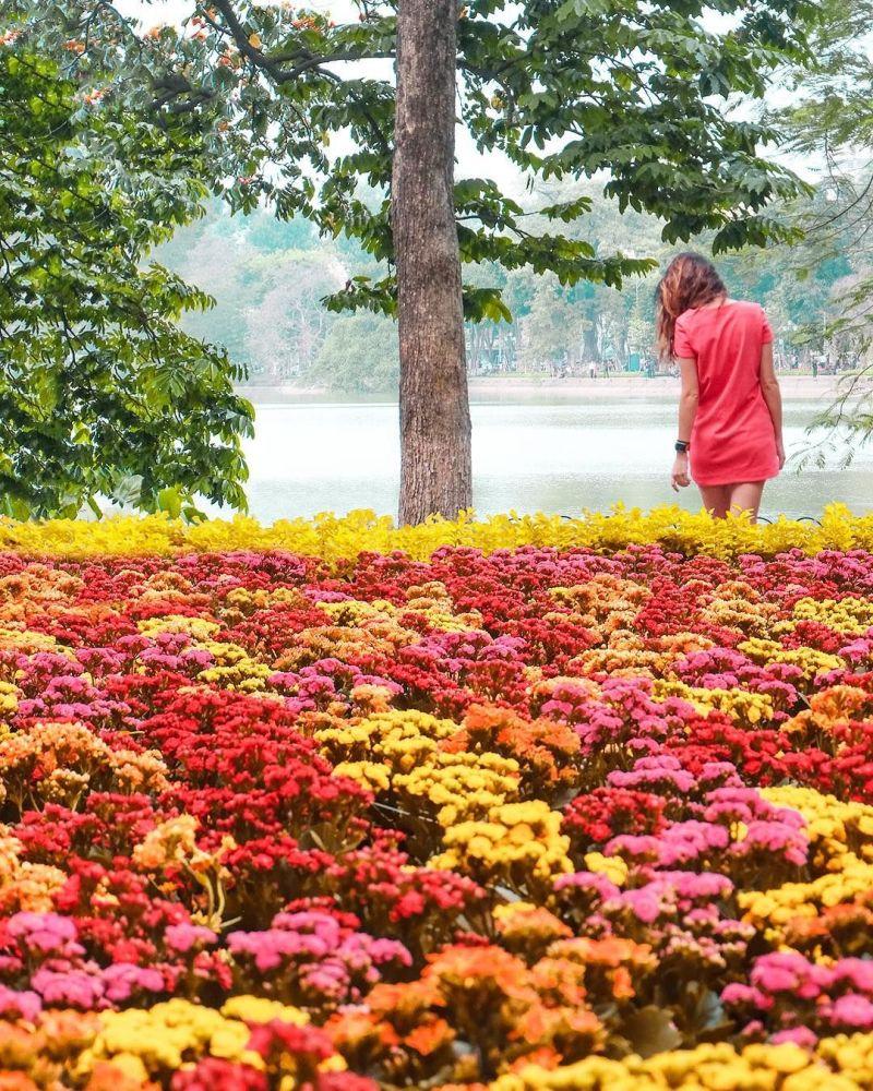 صورة للطبيعة في العاصمة الفيتنامية هانوي لمشروع تصوير بعيدا عن البيت