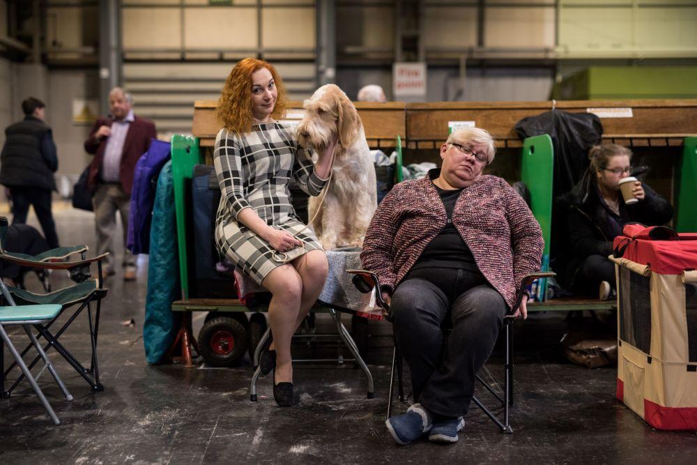 امرأة تجلس بجوار كلبها في اليوم الأخير من عرض للكلاب في برمنغهام، إنجلترا 11 مارس/ آذار 2018