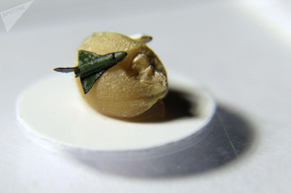 من أعمال رسام الفن الدقيق الروسي فلاديمير أنيسكين - نموذج لمكوك الفضاء بوران على حبة القمح القزم