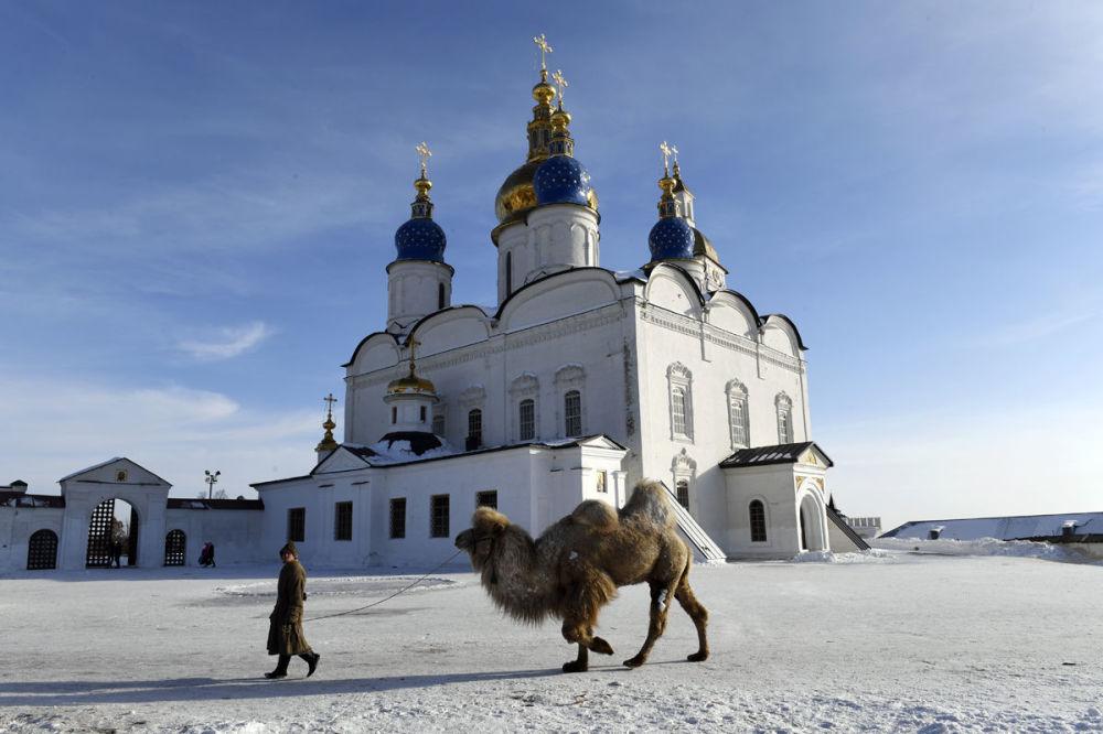 مسابقة أفضل تصوير في روسيا 2017 - صورة سفينة الصحراء الثلجية للمصور سيرغي روسانوف