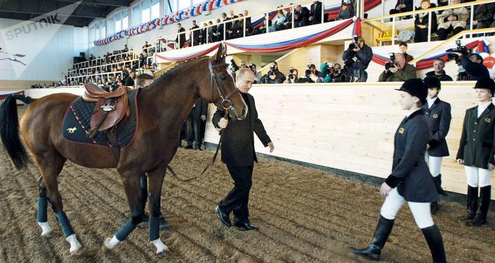 الرئيس الروسي فلاديمير بوتين يهدي للطلاب حصان عربي أصيل، عام 2002