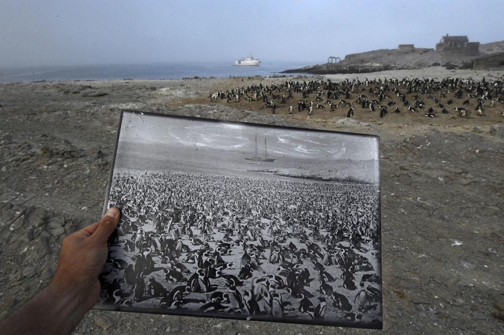 مسابقة صور الصحافة العالمية لعام 2018 - صورة بعنوان رجوعا بالوقت، للمصور توماس بي. بيشاك من ألمانيا/ جنوب أفريقيا، الفائزة بالمرتبة الثالثة في فئة البيئة