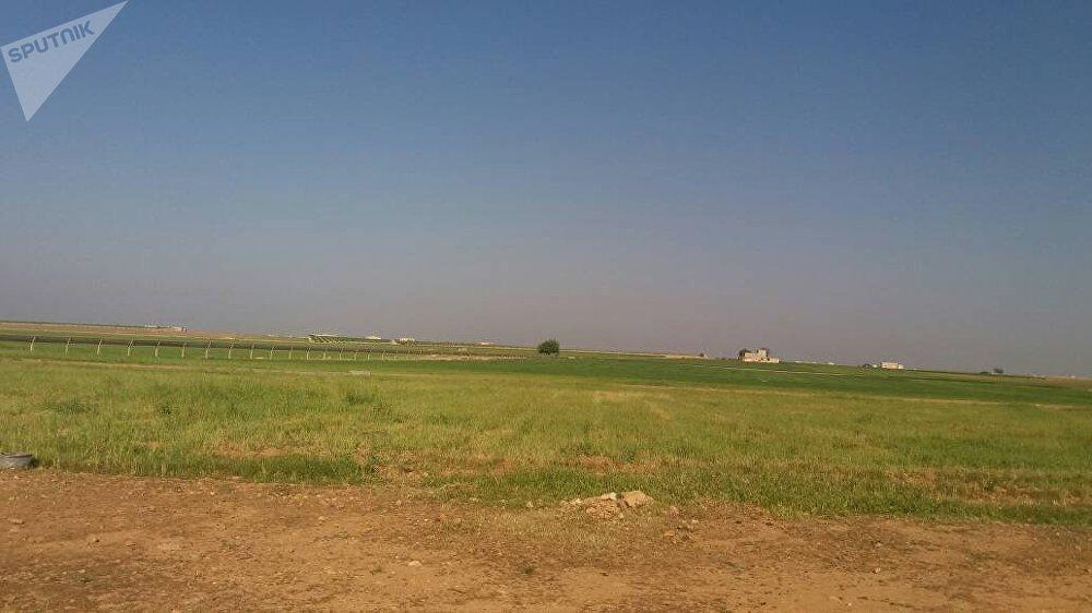 ربيع حلب يزدهر