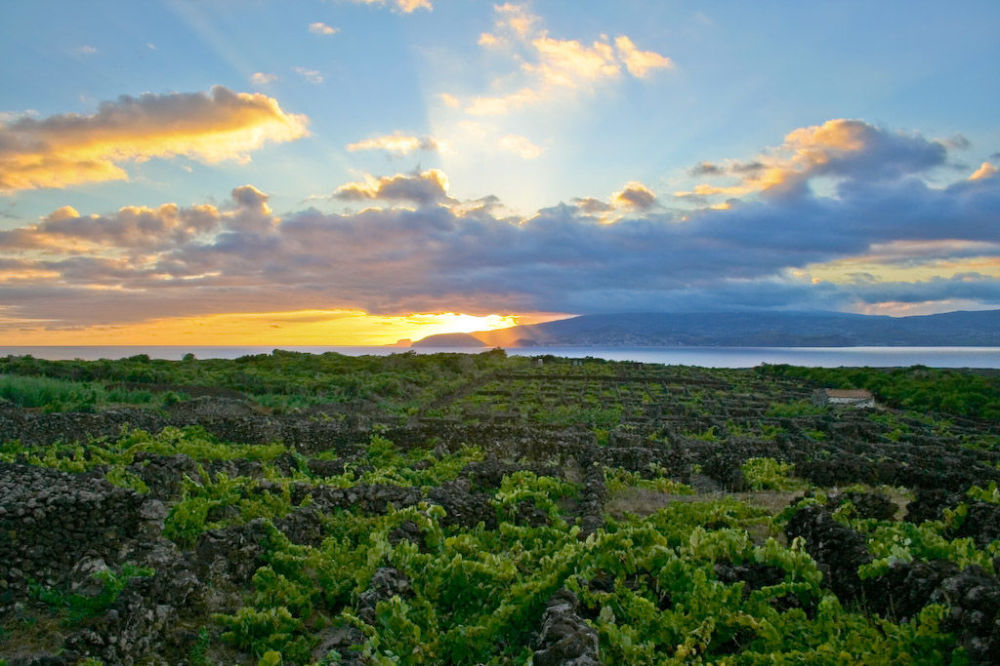 المناظر الطبيعية لوادي الدردار في جزيرة بيكو