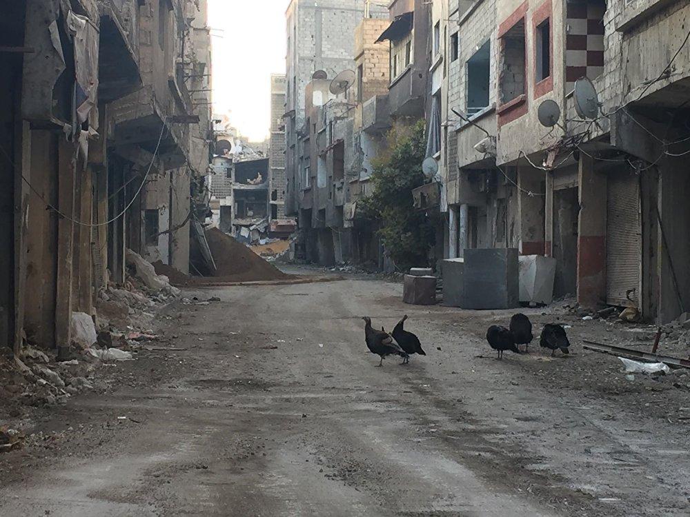 جبهة ريف دمشق الجنوبي