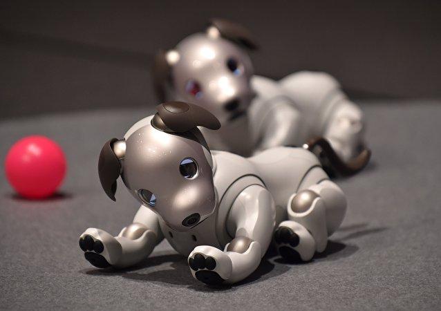 كلب روبوت آيبو