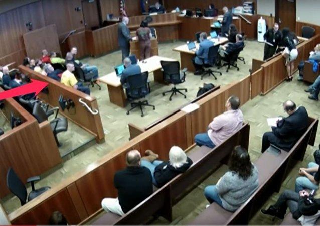 هروب متهم من قاعة المحكمة