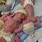 علاقة مؤثرة بين توأمين حديثي الولادة