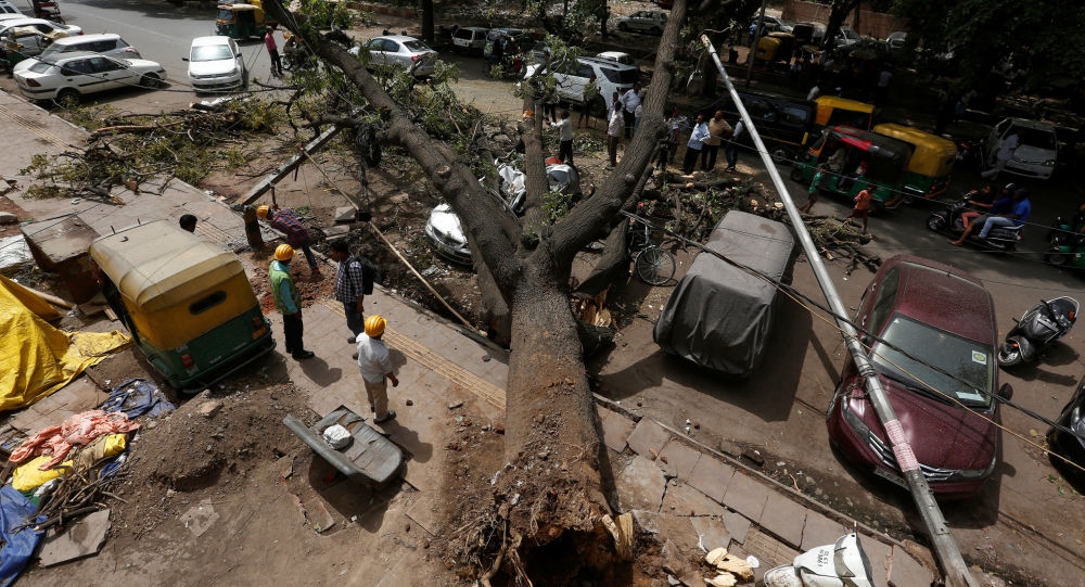 عمال البلدية يقطعون فروع الأشجار المقتلعة بعد العاصفة الترابية ليلة الثلاثاء الماضي في نيودلهي، الهند 16 مايو/ أيار 2018