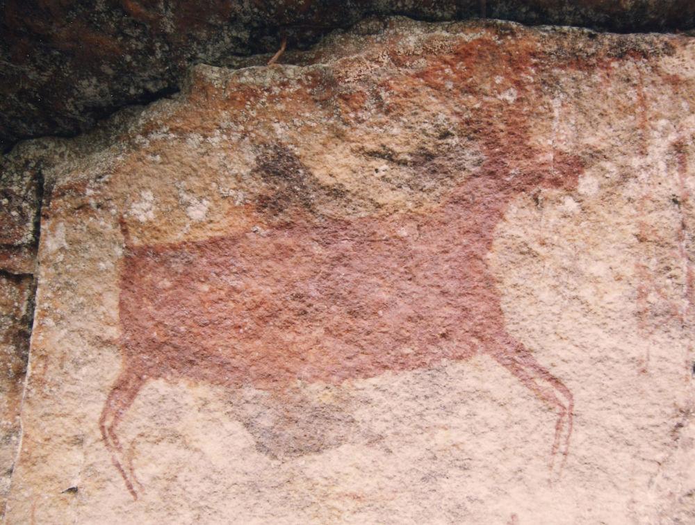 رسم جداري، في الحديقة الوطنية Parque Nacional Natural Chiribiquete في كولومبيا