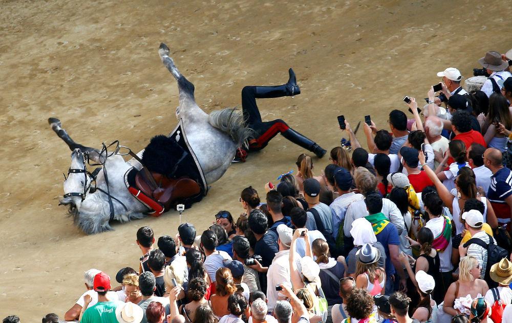 سقوط أحد أفراد شرطة كارابينييري الإيطالية من على حصانه أثناء العرض قبل بدء سباق باليو سيينا، إيطاليا 2 يوليو/ تموز  2018