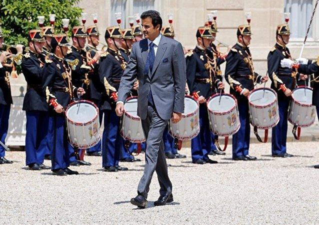أمير قطر الشيخ تميم بن حمد آل ثاني خلال زيارته إلى فرنسا