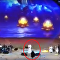 شابة سعودية تركض لتقبل ماجد المهندس في مسرح عكاظ