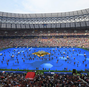 ملعب مباراة نهائي كأس العالم