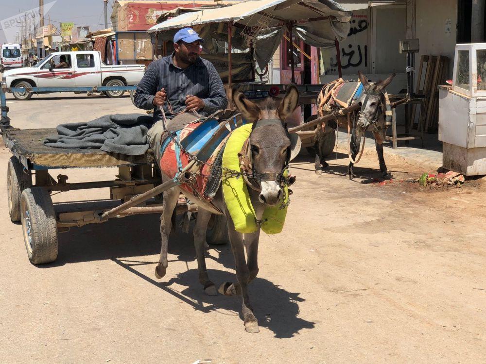 مخيم الزعتري، الأردن