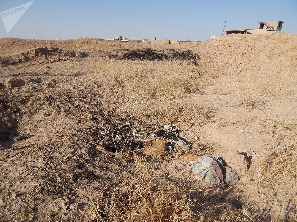 مقابر جماعية في مدينة كوجو الإيزيدية