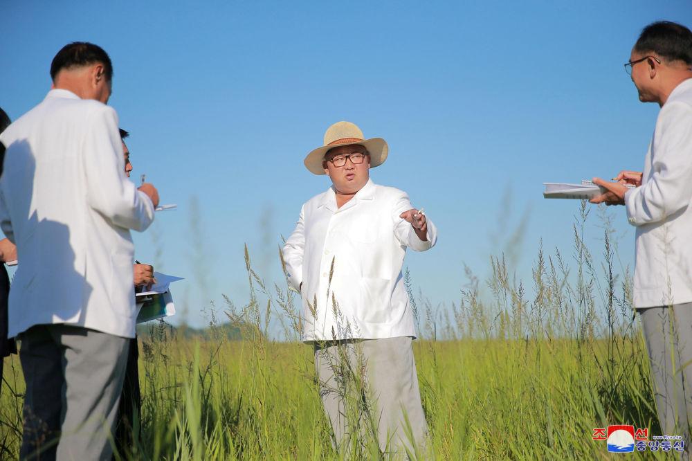 زعيم كوريا الشمالية كيم جونغ أون يتفقد موقع دفيئة زراعية في المستقبل في كيونغ سونغ، كوريا الشمالية 17 أغسطس/ آب 2018