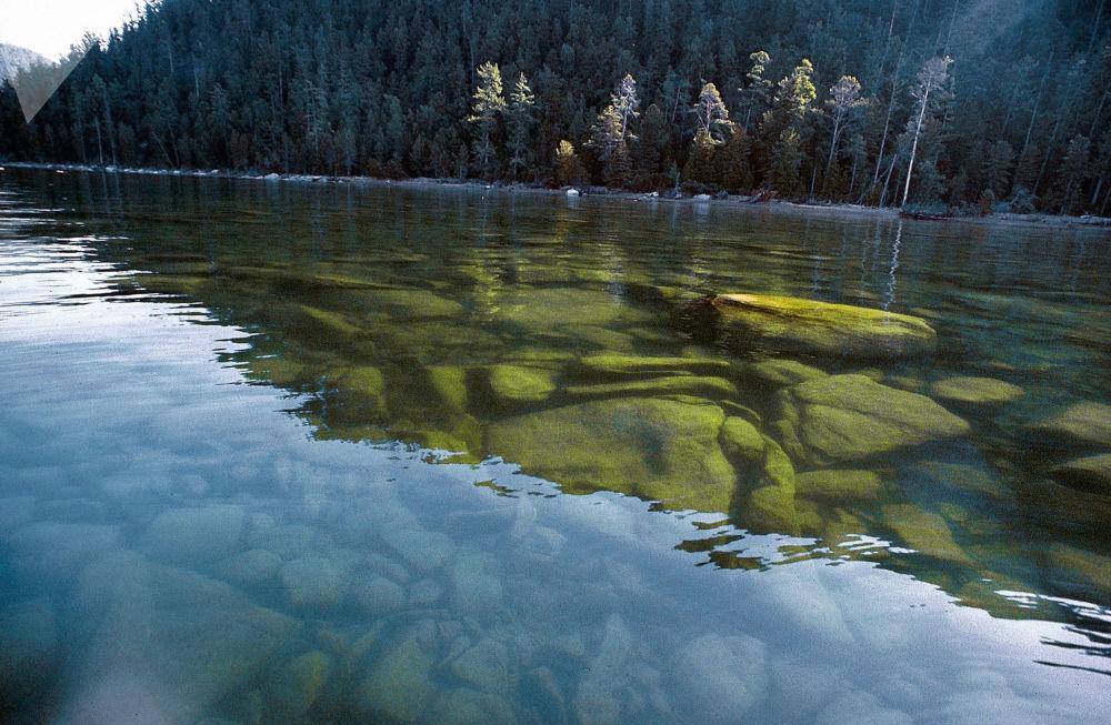 بحيرة بايكال في حديقة وطنية مفتوحة بارغوزينسك